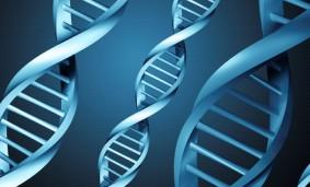 Cuaro concurso genoma