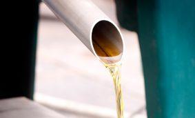 Producción-de-aceite-de-oliva